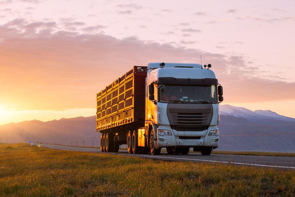 seguro de camión